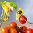 Fork with pasta, tomato and basil — Stock Photo