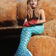 Stock Photo: mermaid