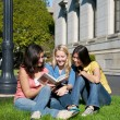 Group of Girls studying outdoor — Stock Photo