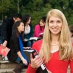 bela estudante sorrindo — Foto Stock #8526173