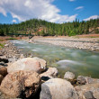 Beautiful River California — Stock Photo #8608201