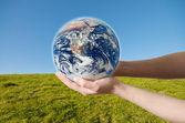 Save Environment Earth — Foto de Stock