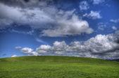 Bel paesaggio verde — Foto Stock
