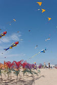 Flowers and kites — Stock Photo