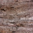 Stock Photo: Old wooden plank