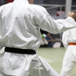 Stock Photo: Karate kata
