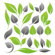 Royalty-Free Stock Imagen vectorial: Leaves design set