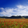 Castelluccio di Norcia - Foto Stock