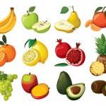 A set of delicious fruit. — Stock Vector #9111227