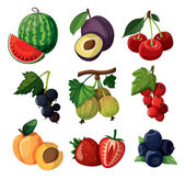 A set of delicious berries. — Stock Vector