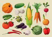 En uppsättning av läckra grönsaker. — Stockvektor