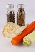 Hortalizas y condimentos — Foto de Stock
