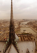 Cityscape of Paris from Notre Dame — Stock Photo