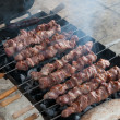Pork Kebab on grill — Stock Photo