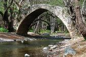 Ancient Venetian Bridge — Stock Photo