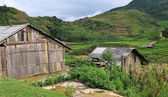 Farmland, Vietnam — Stock Photo