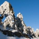 Winter landscape — Stock Photo #9425222