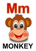 "Letter ""M"" monkey — Stock Photo"