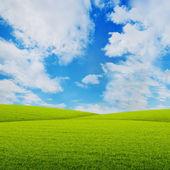 три луга с облаками на небе — Стоковое фото