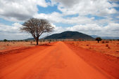 A red Road — Stock Photo