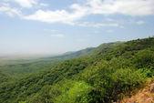 Green cliff — Stock Photo