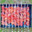 Shish kebab. — Stock Photo #9057753