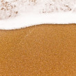 Foto Stock: Close view of small sewave on sand.