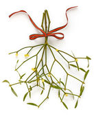 Christmas mistletoe, kissing ball — Stock Photo