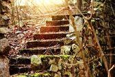 Stary rock schody — Zdjęcie stockowe