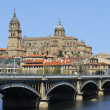 Stock Photo: Cathedral of Salamanca