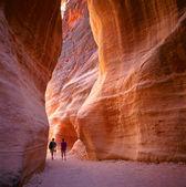 El siq en petra, jordania — Foto de Stock