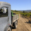 Stock Photo: Old French truck with grapes