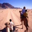 A camel trip in the desert — Stock Photo