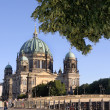 The Berliner Dom - Stock Photo