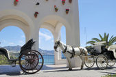 Horse driven carriage — Stock Photo