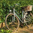 Old blue French bicycle — Stock Photo #8499145