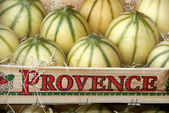 Melons in France — Stock Photo