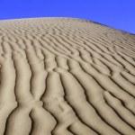 The Sahara Desert — Stock Photo