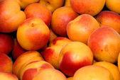 świeże nektarynki — Zdjęcie stockowe