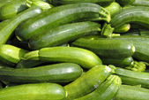 Fresh courgettes — 图库照片