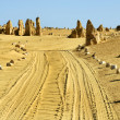 Pinnacles desert in Western Australia — Stock Photo #8635778
