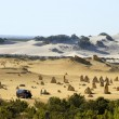 Pinnacles desert in Western Australia — Stock Photo #8636137