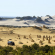 Stock Photo: Pinnacles desert in Western Australia