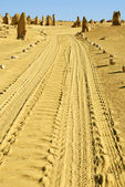 Pinnacles desert in Western Australia — Stock Photo