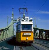 Sarı tramvay ile yeşil özgürlük köprüsü — Stok fotoğraf
