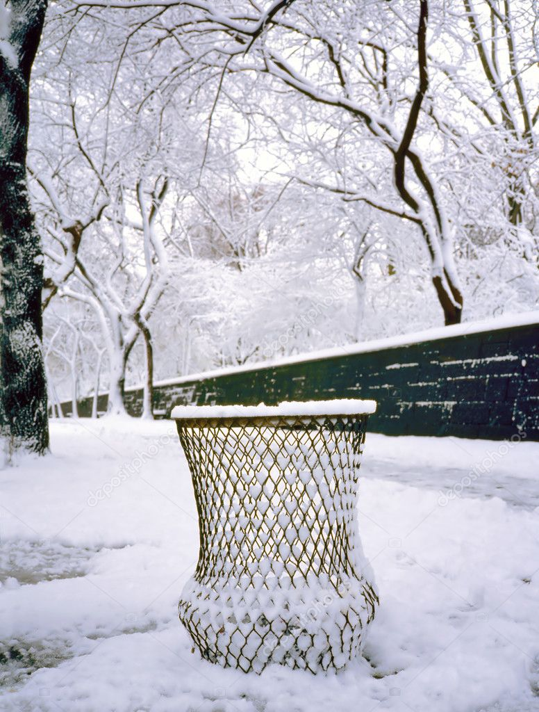 Snow in Central Park, New York City , U.S.A. — Stock Photo #8889279