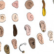 Set of 29 Ears - Stock Photo