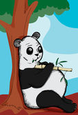 Pot Bellied Panda — Stock Vector