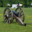 Civil War Cannon — Stock Photo #10171324