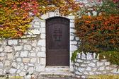 Old Brown Door — Stock Photo